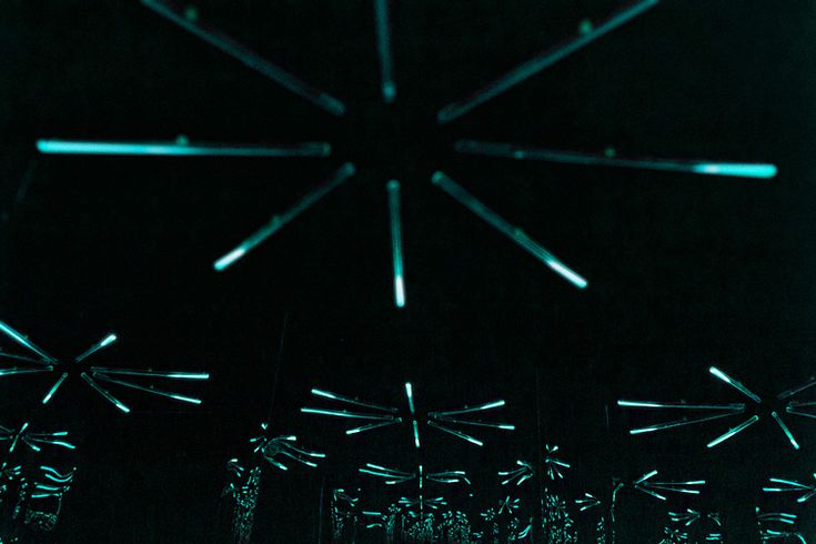 one-luminous-dot-bioluminescent-light-installation-by-teresa-van-dongen-3