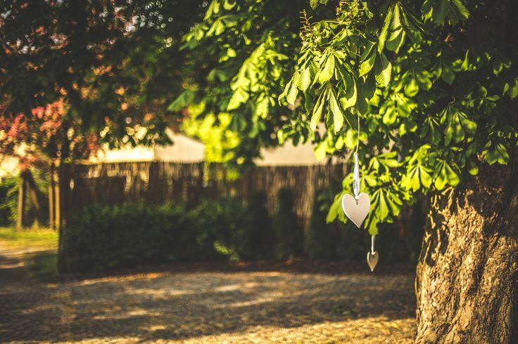 #garden #decoration #wedding #love