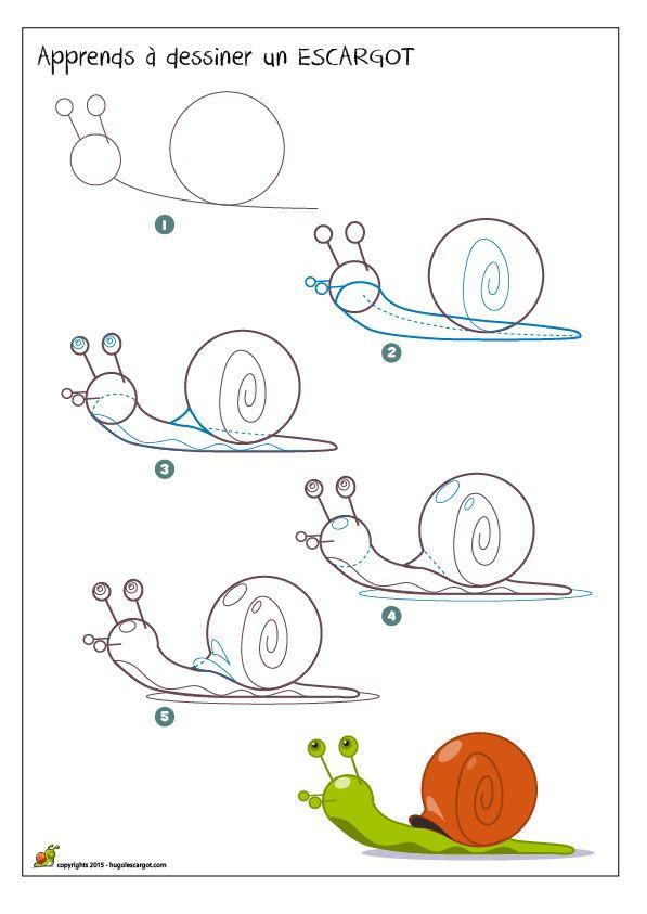 Apprendre à dessiner un escargot, méthode pour dessiner un escargot coloré