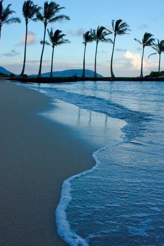 Y pasé a decir: 'Hasta aquí puedes venir, y no más allá; y aquí quedan limitadas tus orgullosas olas' (Job 38:11) (Kahala, Oahu, Hawaii) SB