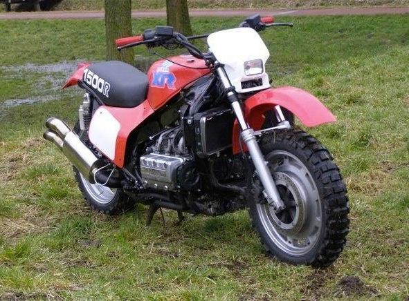 Just a Honda Goldwing dirtbike conversion. Pretty everyday stuff...