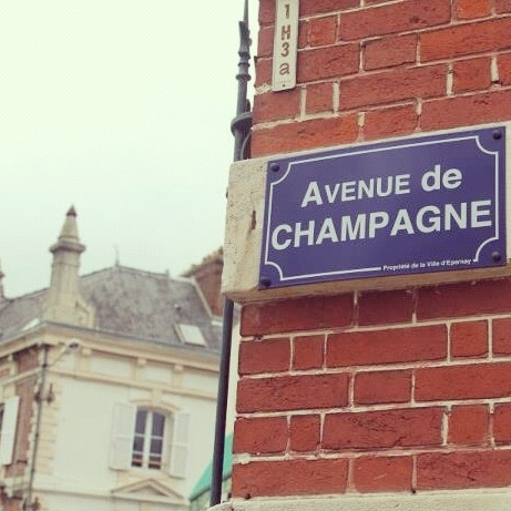Champagne Capital // Check out the tour of their underground cellar & taste their bubbly beverage! Reims, one of the main gastronomic centers of France, eagerly shows you the legacy of its glorious past & leads you into a prestigious realm of the most celebrated & festive of wines. (Reims, France)
