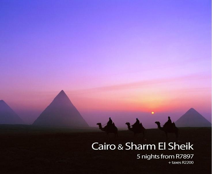 CAIRO & SHARM EL SHEIK    Avoca Travels Easter Special  https://www.facebook.com/photo.php?fbid=409536859135548=a.370442539711647.86796.369549089800992=3