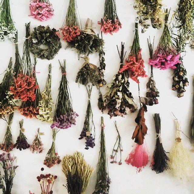 Cuando decimos 'cada vez más flor seca'... es que empezamos a tener un surtido interesante!  #floristeria #laespinafloristeria #condealtea #comerciolocal #florhisteria #hayvidafueraderuzafa #florseca #flores #decoracion #valencia #interiorismo