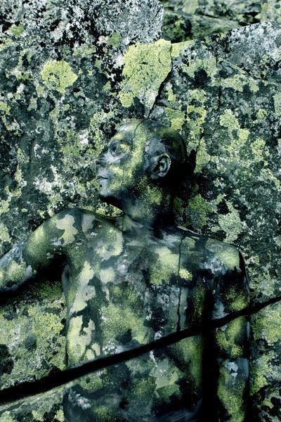 Top 18 des bodypaintings camouflages de Johannes Stötter, le cache-cache high level
