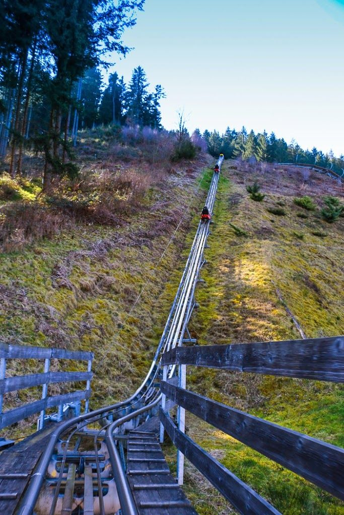 Sommerrodelbahn Gutach, so close to Freiburg!! Screaming like a Baby // Black Forest, Germany • The Overseas Escape