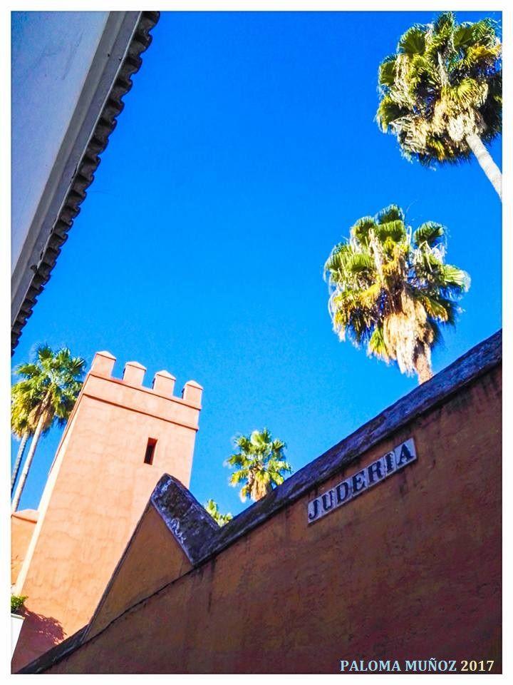 Cuando la ciudad de Sevilla fue conquistada en 1248, por el cristiano rey Fernando III de Castilla, los judíos empezaron a poblar en abundancia esta ciudad.  Su hijo, el rey Alfonso X le concedió cuatro mezquitas para que las convirtieran en sinagogas  When the city of Seville was conquered in 1248, by the Christian king Fernando III of Castile, the Jews began to populate this city in abundance.  His son, King Alfonso X, granted him four mosques to convert them into synagogues,