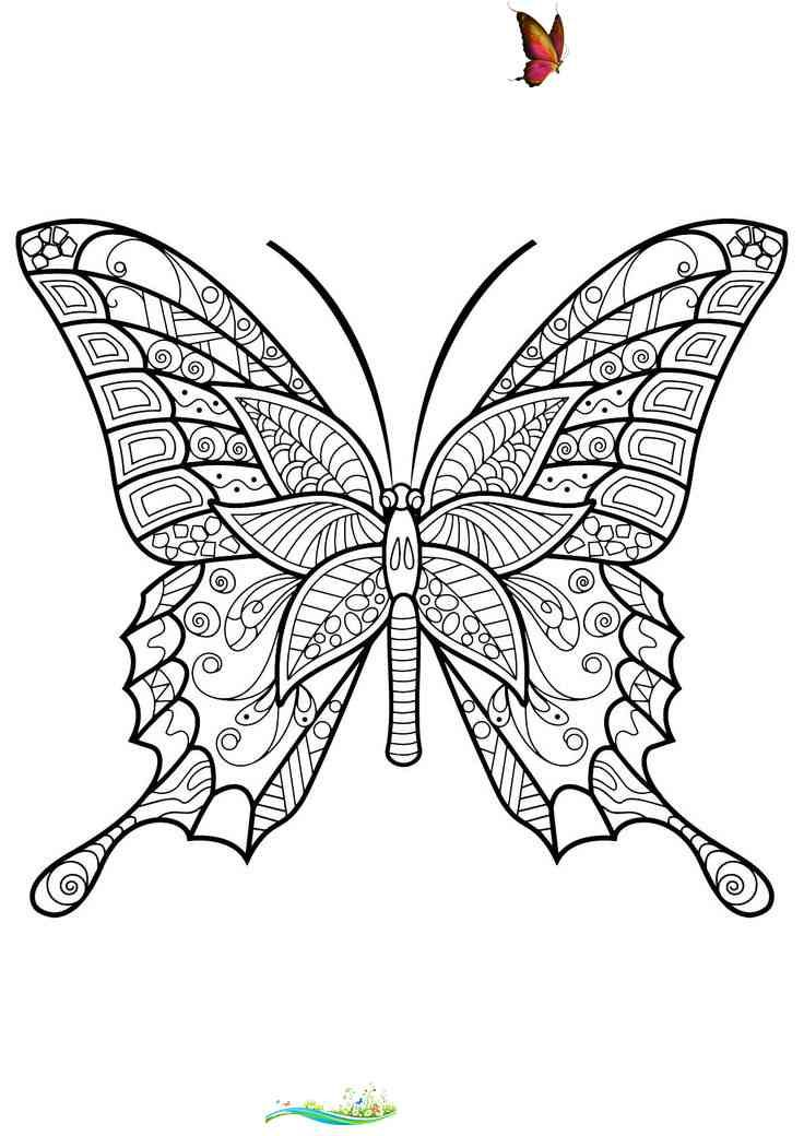 Butterfly Coloring Page Printable Youngandtae Com Butterfly Coloring Page Printable Butterf Insect Coloring Pages Butterfly Coloring Page Butterfly Printable