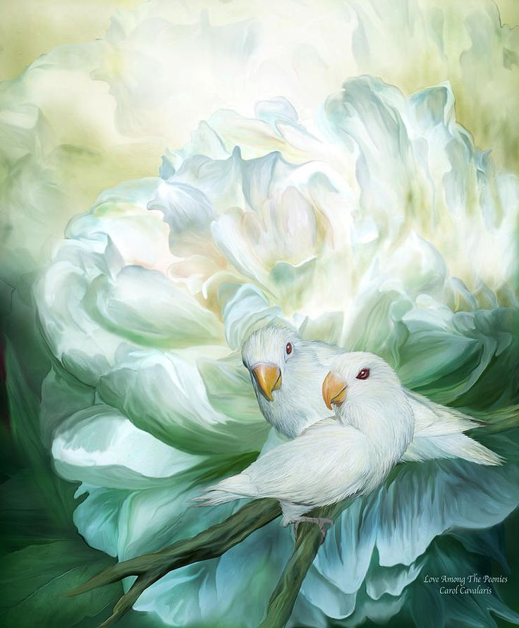 Love Among The Peonies ~ Carol Cavalaris