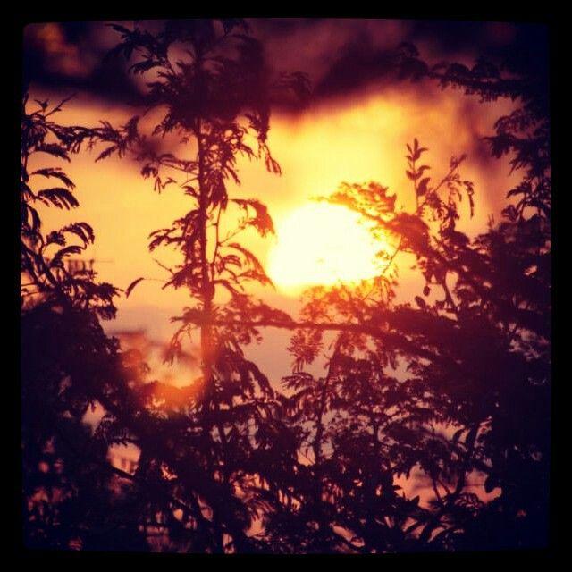 African sun set