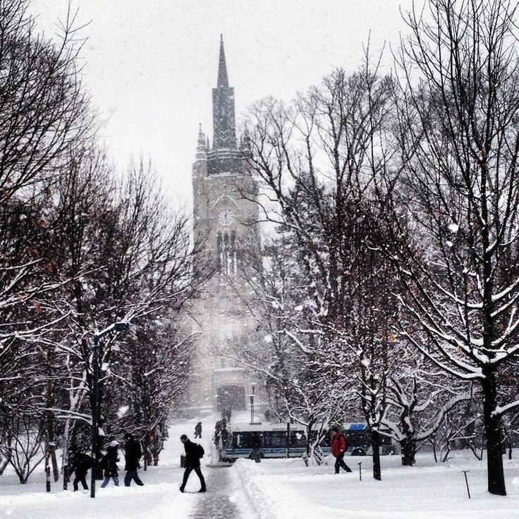 UWO Winter - Prettiest University in Canada - Western University