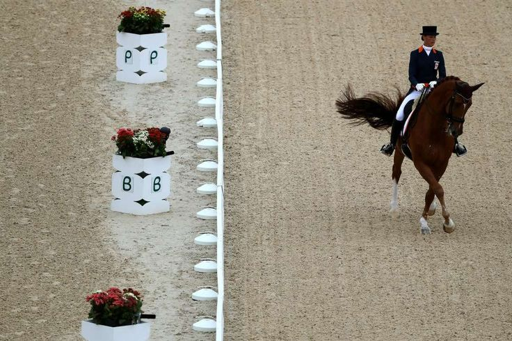 "The 15 best moments from the Rio Olympics so far:  August 16, 2016  -         12. Adelinde Cornelissen bowing out of dressage to protect her horse  -  Andelinde Cornelissen of the Netherlands took herself out of the Olympics to protect her horse, who'd gotten sick. ""My buddy, my friend, the horse that has given everything for me his whole life does not deserve this?."" she wrote in a Facebook post."