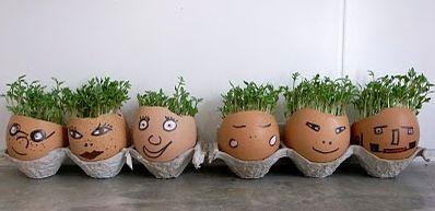 DIY Ostern, Easter, Wielkanoc. Kresse in Eierschale pflanzen.