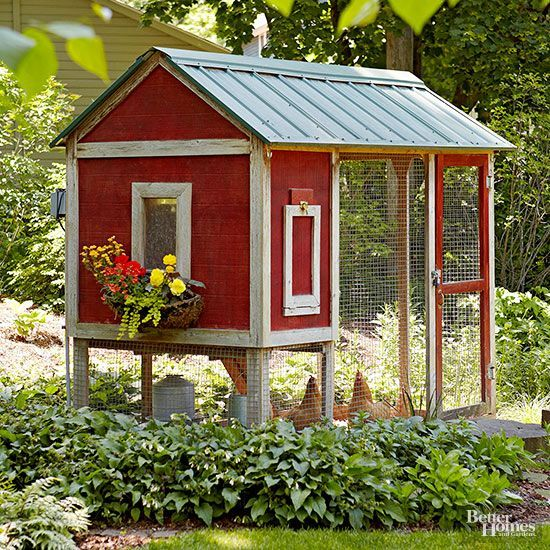 Learn the elements of great chicken coops.