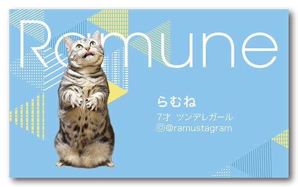 ペット名刺 猫デザイン 横型021<br> オーダーメイド 猫グッズ (1個50枚入)
