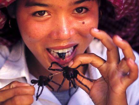 Tarantulas, eaten in Cambodia, where strange foods abound  15 Strangest Foods (strange foods, bizarre foods) - ODDEE