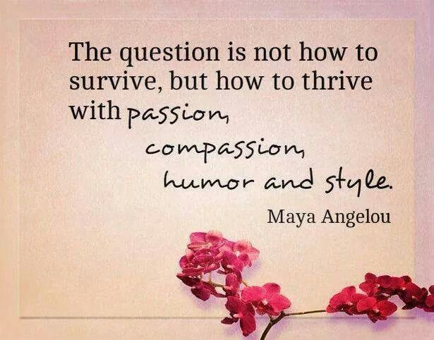 Maya Angelou Quote The Best Comfort Food Will Always Be: 38 Best Maya Angelou Quotes Images On Pinterest