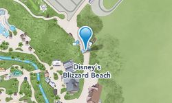 Discover frosty fun for the whole family at Disney's Blizzard Beach water park, a one-time ski resort that has melted into a watery wonderla...