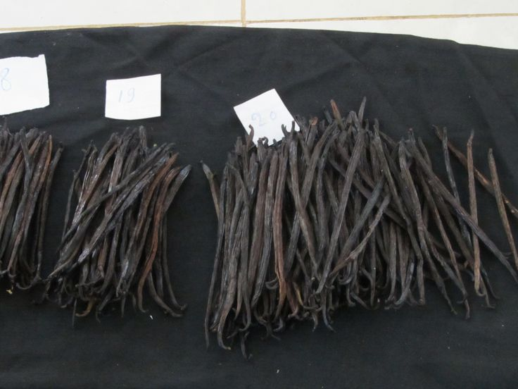 Each of our cured vanilla bean is separated based on pod length (grading) http://indonesianorganicvanillabeans.com/