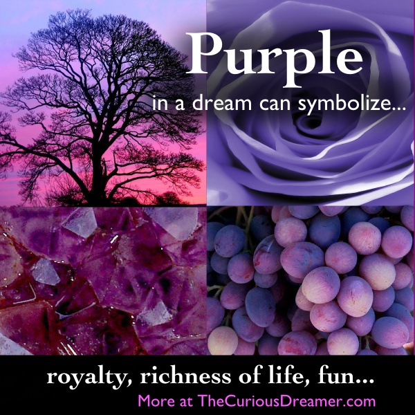 159 best dreams what the subconcious speaks images on pinterest purple dream symbol in the curious dreamer dream dictionary malvernweather Images