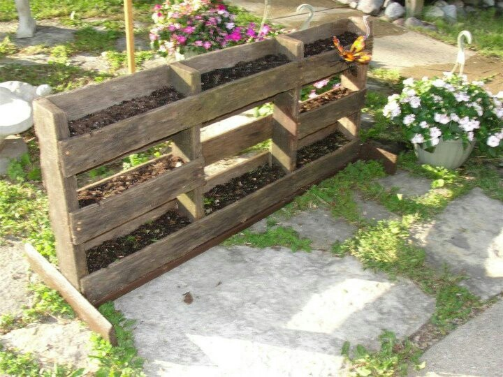 Small garden space out of a pallet