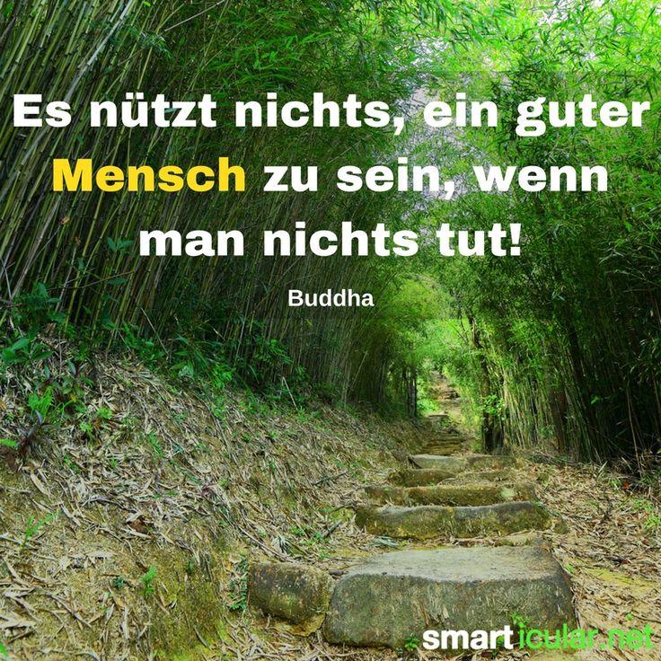 Es nützt nichts, ein guter Mensch zu sein, wenn man nichts tut! - Buddha