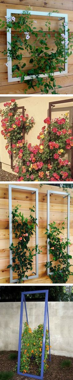So many trellises, so little time. Space saving trellises help climbers have a place to go, but keep them off the wall. #terratrellis | vertical garden