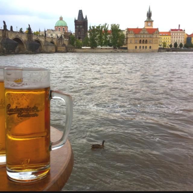 Budweiser. Praha, Czech Republic. August 2010.