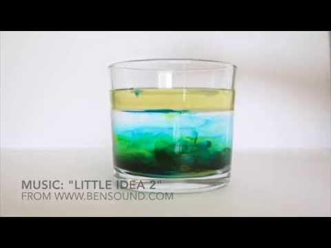 Cool Science Experiments: Exploring the Density of Liquids - Buggy and Buddy