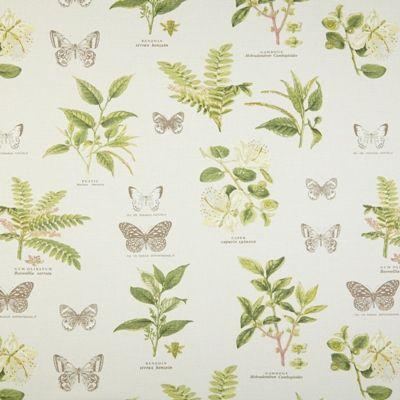 Botany Acacia 100% cotton 137cm |61cm Dual Purpose
