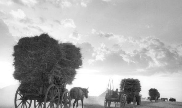 Τακης Τλουπας, ο ωραιολατρης φωτογραφος απο τη Λαρισα