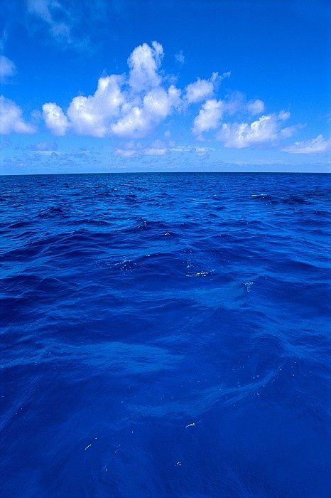 deep blue sea <3  - Explore the World with Travel Nerd Nici, one Country at a Time. http://travelnerdnici.com/