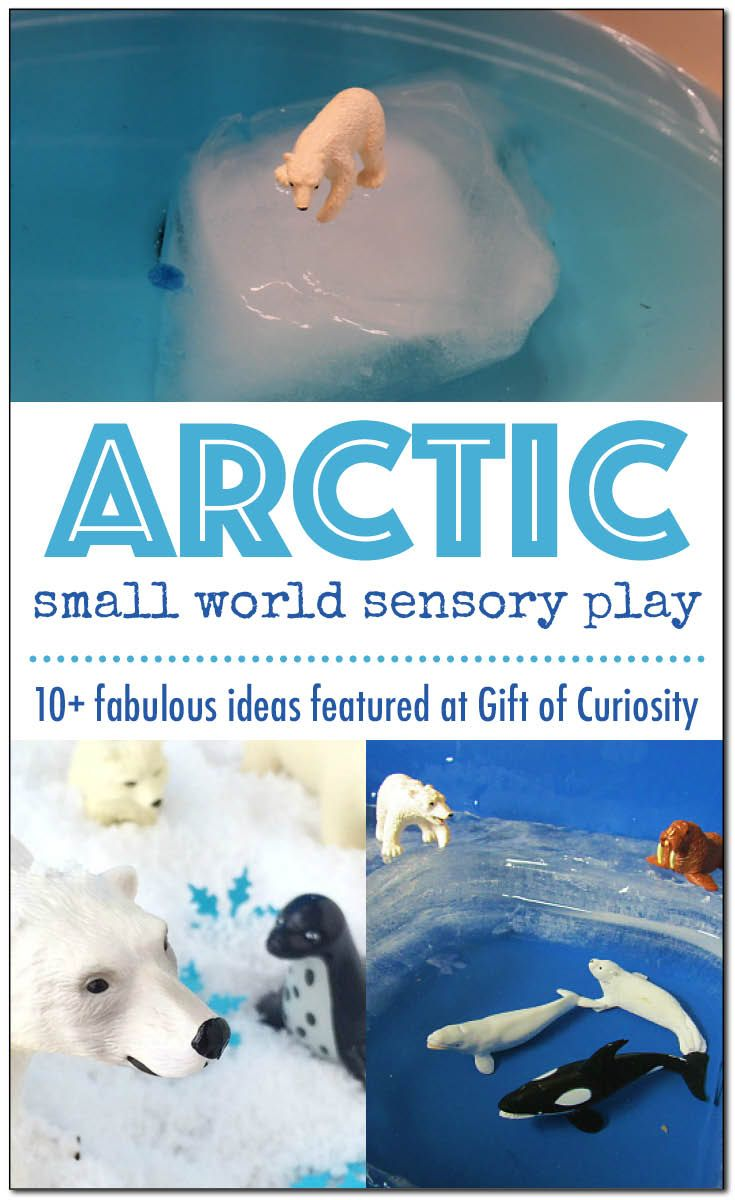 10+ Arctic small world sensory play ideas | Great inspiration for your Arctic Unit Study | Building an Arctic small world sensory habitat is a fantastic way for children to assimilate the information they have been learning about the Arctic and demonstrate their understanding | #sensoryplay #Arctic || Gift of Curiosity