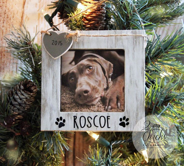 Personalized Pet Christmas Ornament, Picture Frame Ornament, Dog Christmas Ornament, Pet Ornament by 2ChicksAndABasket on Etsy https://www.etsy.com/listing/252139457/personalized-pet-christmas-ornament