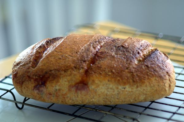 Zielony Zagonek » FAST AND DELICIOUS BREAD
