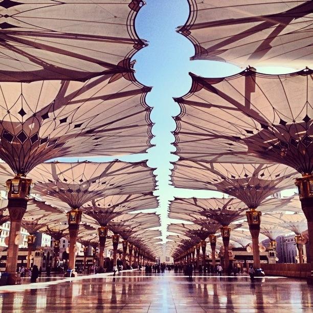 Holy land nabawi