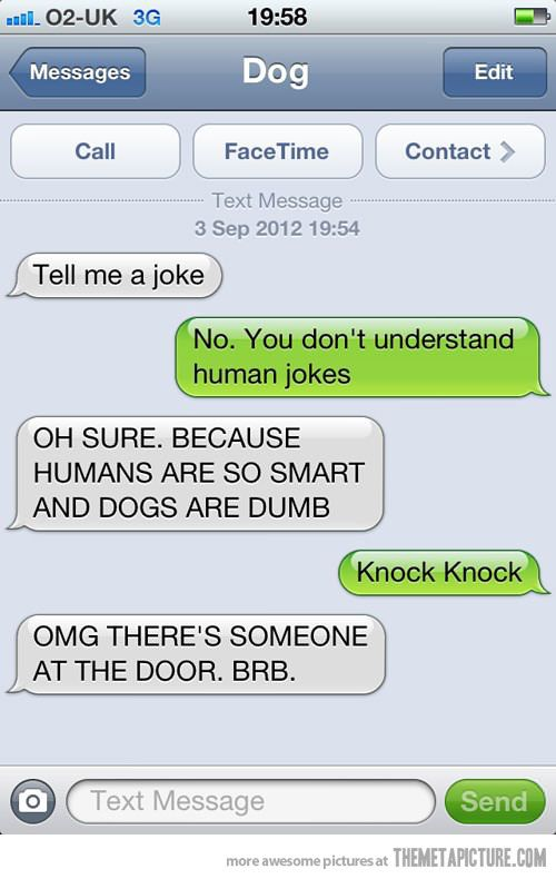 Dog asks for a joke…: Funny Texts, Laughing,  Internet Site,  Website, Dogs Jokes, Web Site, Funny Stuff, Dogs Texts, Knock Knock