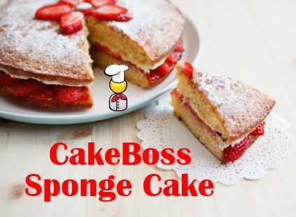 CakeBoss Sponge Cake Recipe. On one of their shows, they said to add cream cheese to make it really dense and good for carving, and it looked DELICIOUS. Gotta try it!