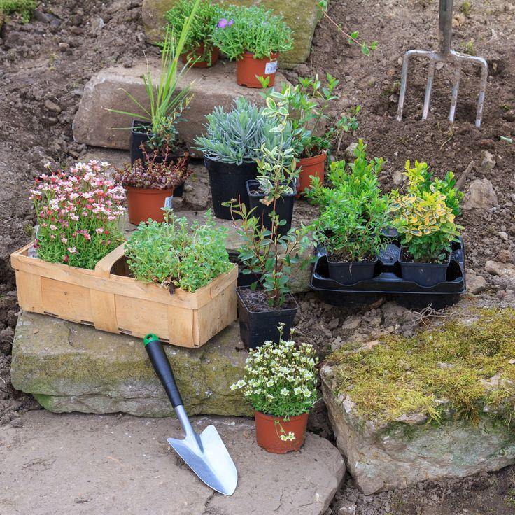 Affordable Backyard Vegetable Garden Designs Ideas 55: 68 Best Gardening In Zone 5 Images On Pinterest