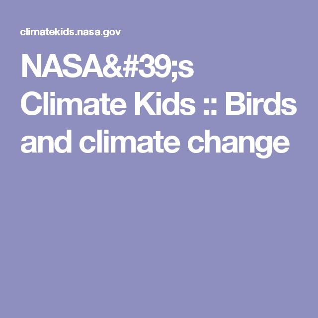 NASA's Climate Kids :: Birds and climate change