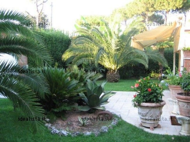 http://www.idealista.it/immobile/5706643/index.htm a very beautiful garden for sale, with his villa too