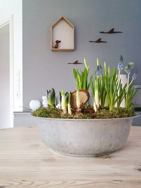 Die besten 25+ Vase glas Ideen auf Pinterest Gläser und flaschen