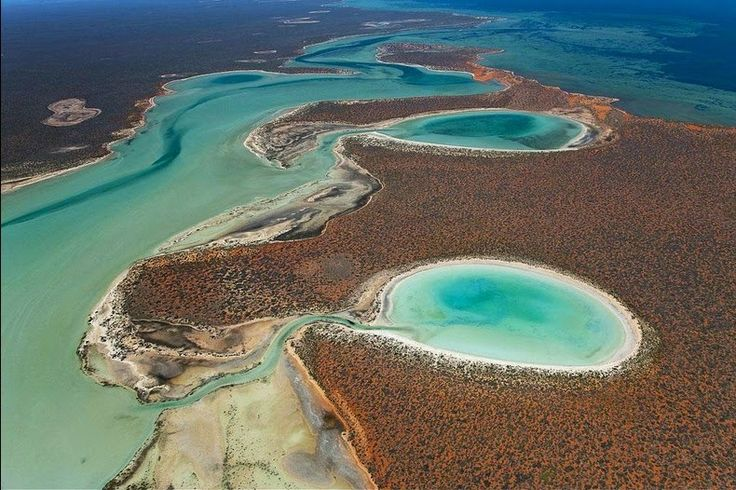 The most westerly point of the Australian continent, next to the Indian Ocean is called Shark Bay, an area of exceptional natural features and a World Heritage site. Scattered around Shark Bay, especially within Peron Peninsula inside the Francois Peron National Park, are several saline lakes of gypsum, known locally as birridas...