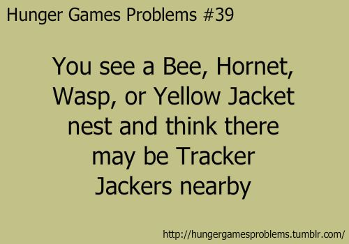 For the record, i would pin all of the hunger games problems, but these are my favorites :D