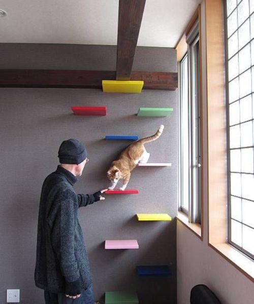 M s de 25 ideas incre bles sobre muebles para gato en - Arbol gato ikea ...