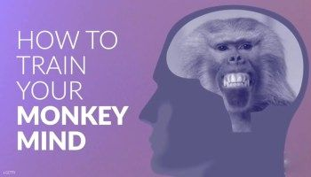 How to train your monkey mind?