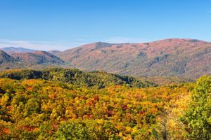 5 Family Activities in Gatlinburg TN to Enjoy This Fall