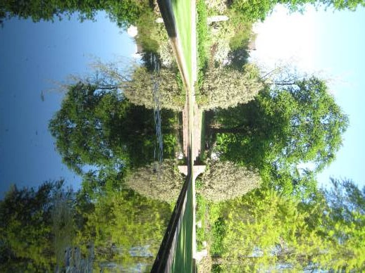 Rustenberg has the most amazing garden - Tours du Cap