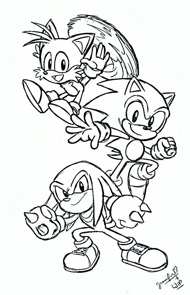 Pin By Livia Santos On Sonic E Seus Amigos Hedgehog Colors Cartoon Coloring Pages Coloring Pages