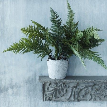 Faux Fern Grass in Pot | Plant Pots | Graham and Green